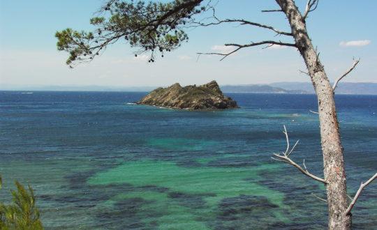 Neem de ferry vanuit de Côte d'Azur: Port-Cros!